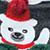 Y Ведмідь Сірий